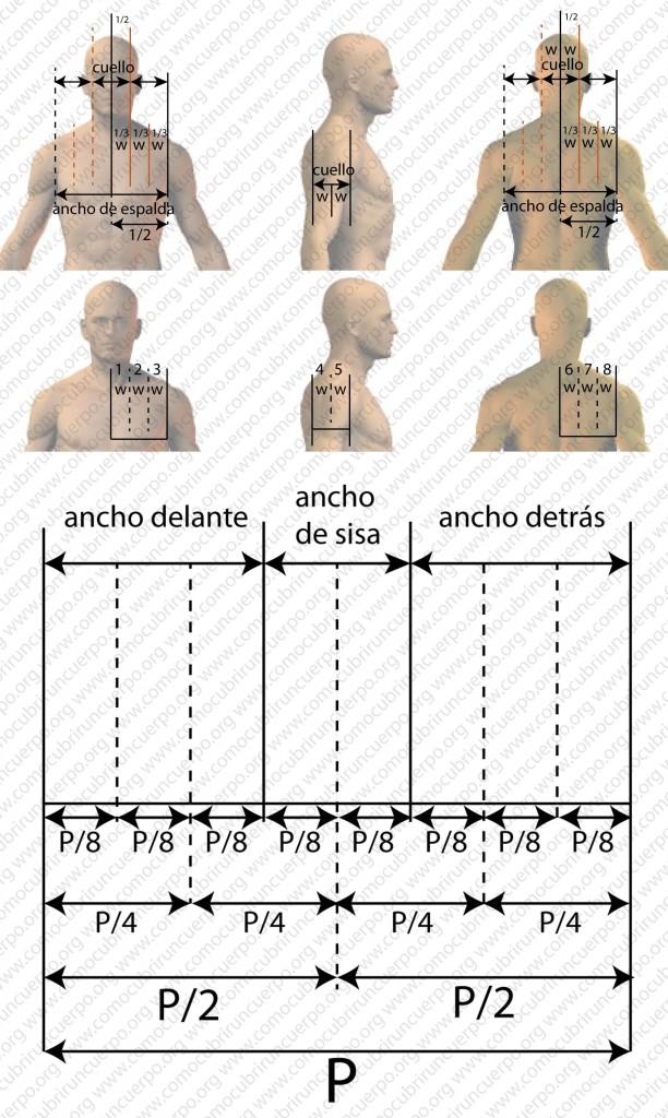 131226_PROPORCIONES PECHO_04