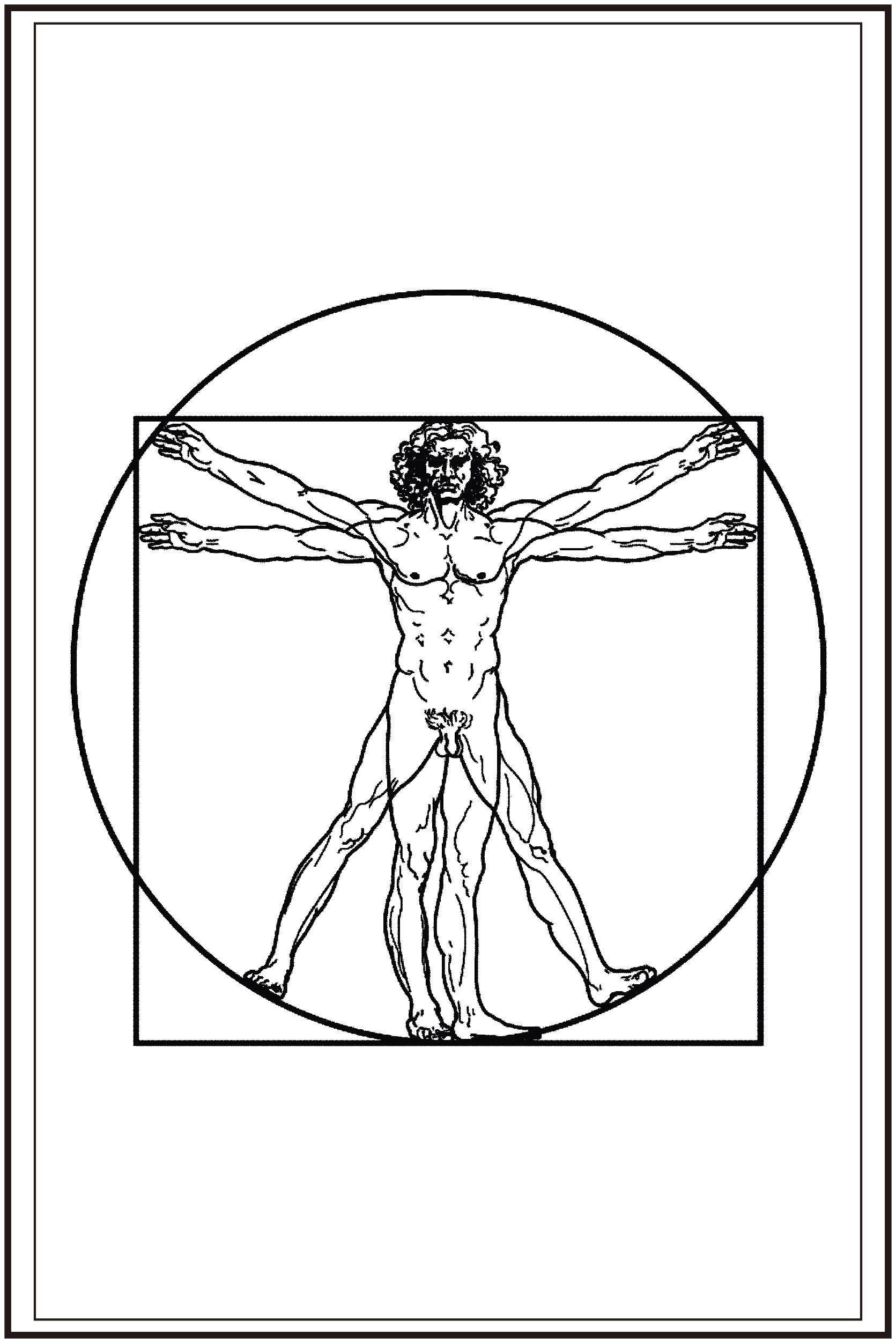 La simetr a la antropometr a y las tablas de medidas for Medidas antropometricas del cuerpo humano